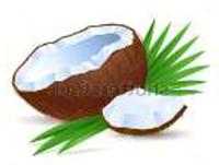 cocos-artikel